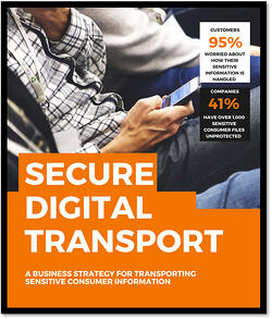 Secure Digital Transport Whitepaper